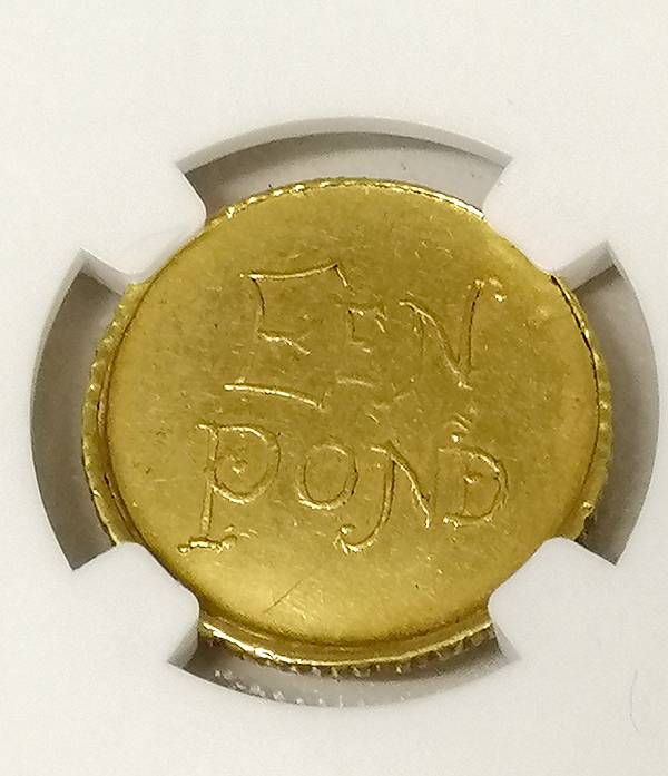 Een Pond coin close up