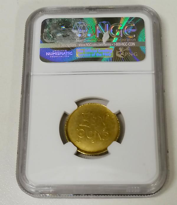 Een Pond coin